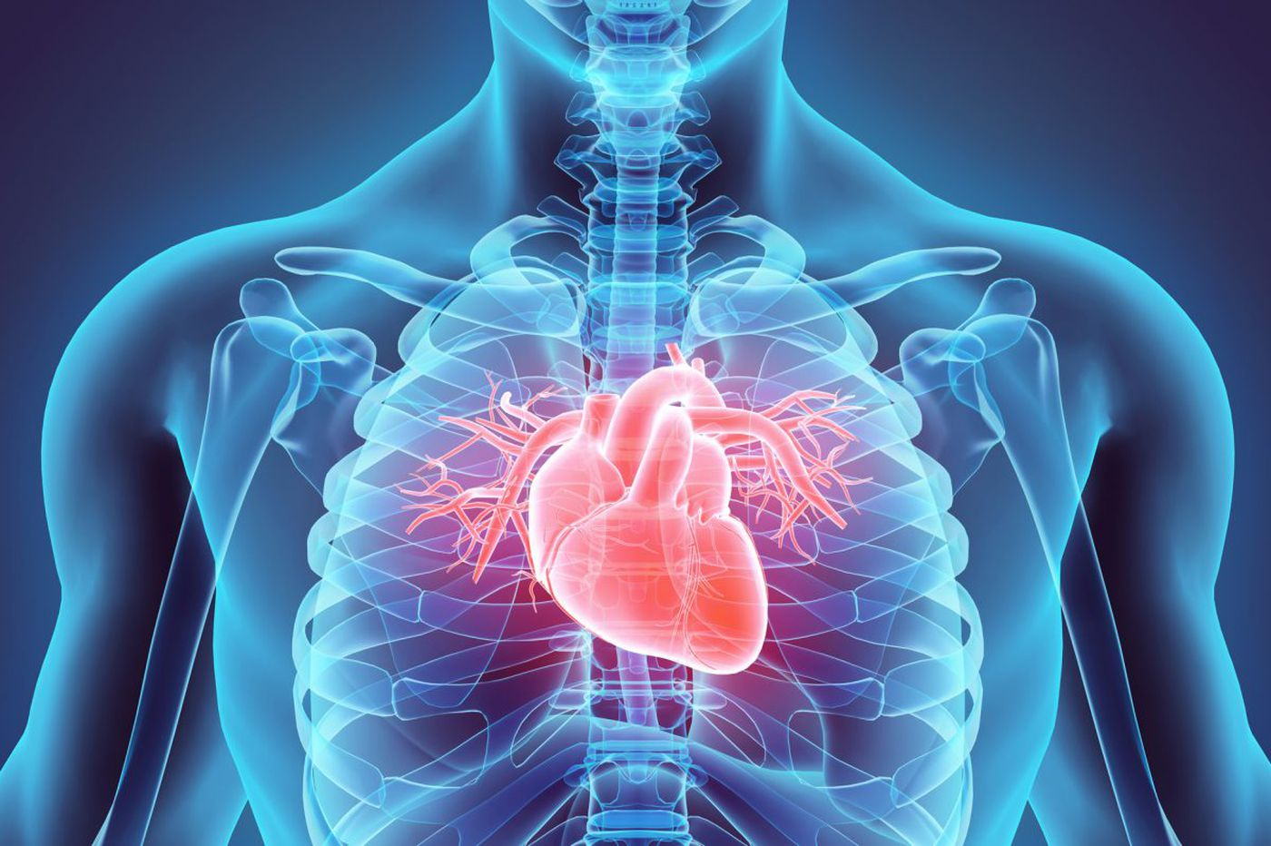 Cardiology Webinar 2021